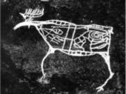 В Хабаровском крае среди петроглифов найдено изображение древнего лося