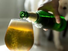 Ученые рассказали, чем полезно пиво