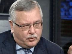 Партия выдвинула Гриценко в президенты