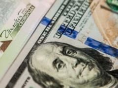 Курс валют на 1 февраля: впервые за три месяца гривна упала до минимума