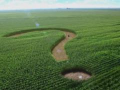 Названа стоимость гектара земли после открытия рынка