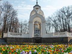 В Харькове начали высаживать фиалки