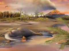 Ученым удалось выделить хорошо сохранившиеся клетки динозавра